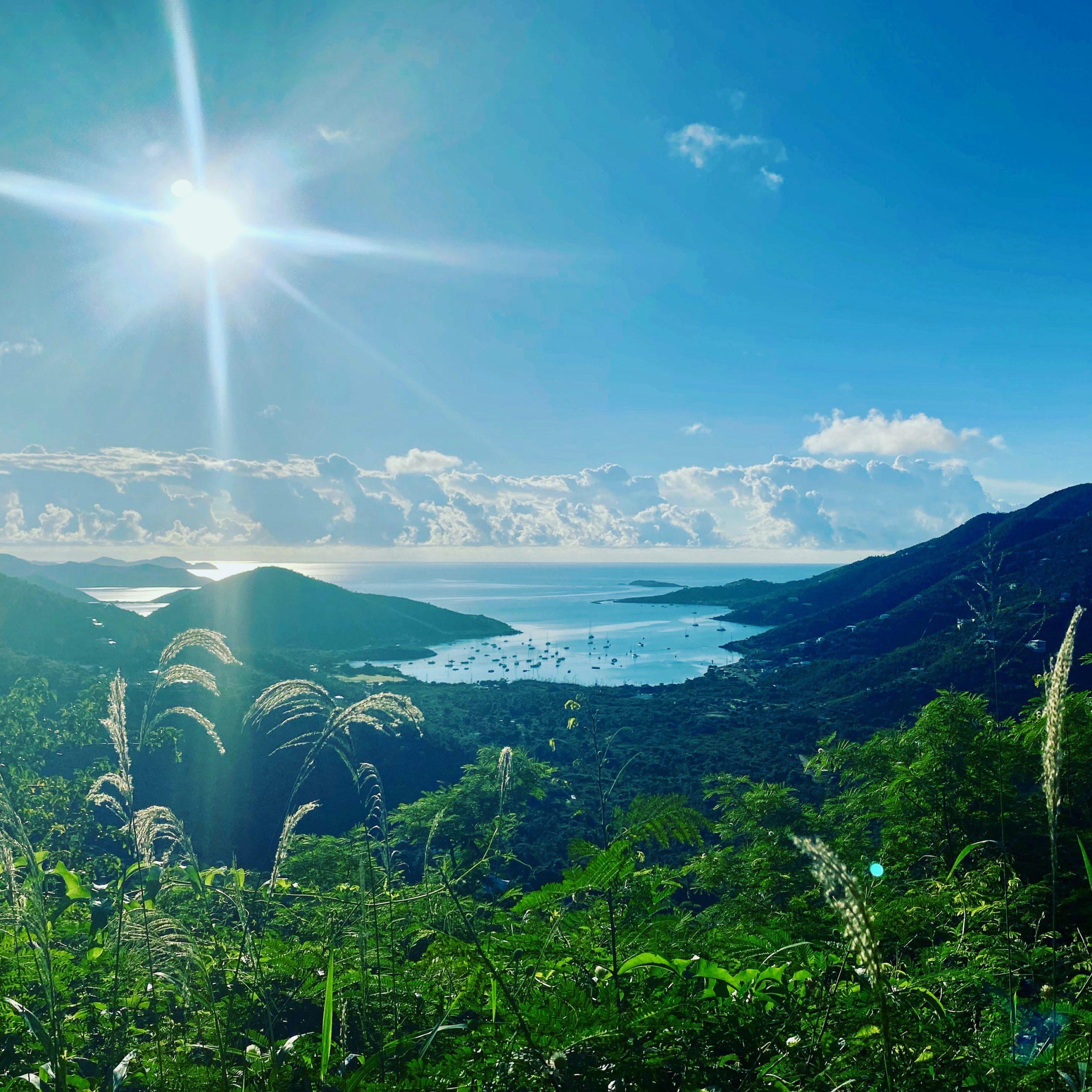 Coral Bay Sunshine