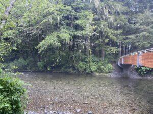 Totem Park Bridge